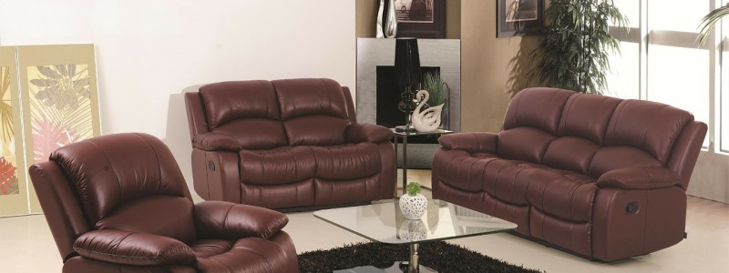 protect-leather-couch